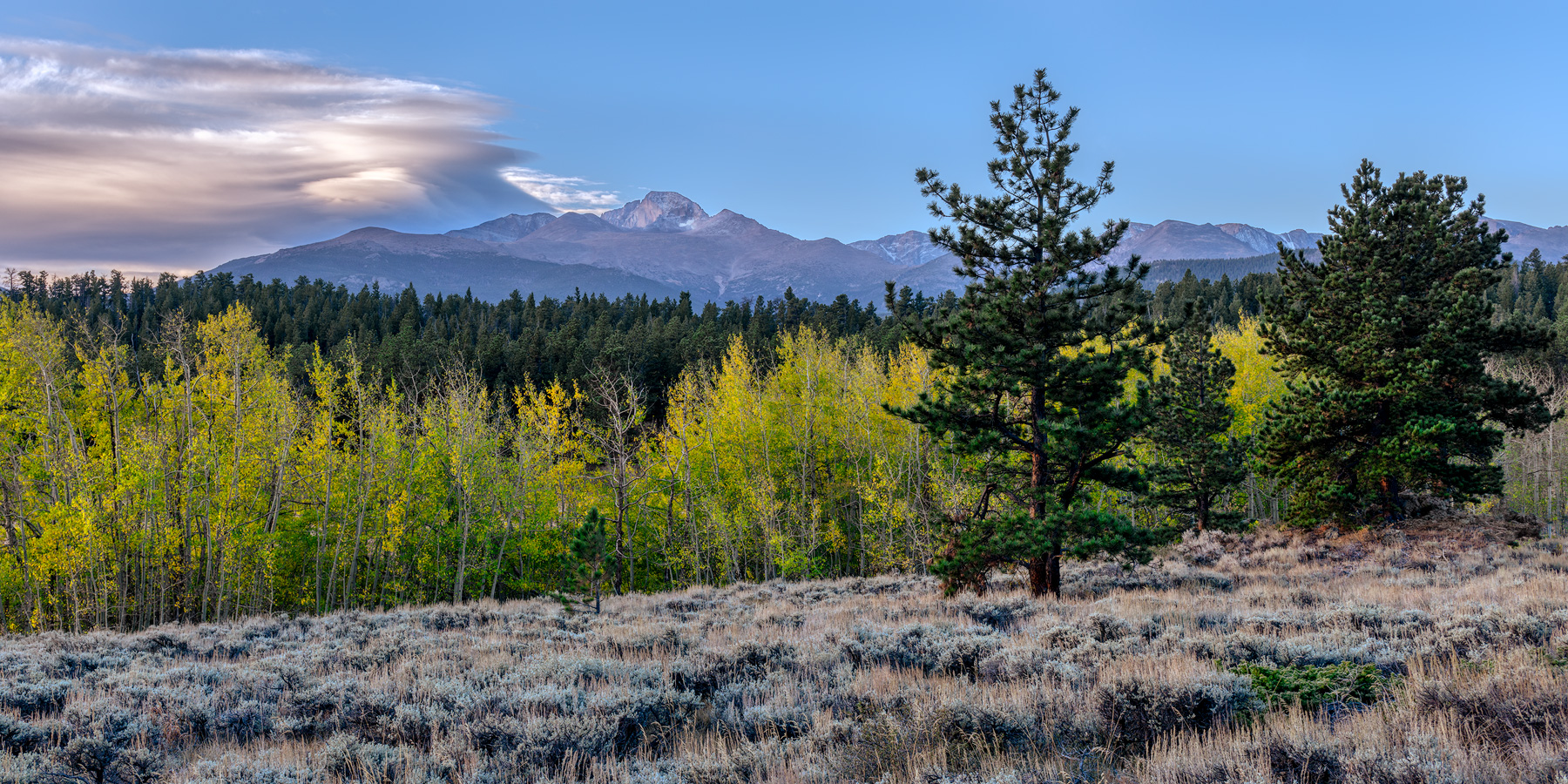 From The Meadows - RMNP_0088