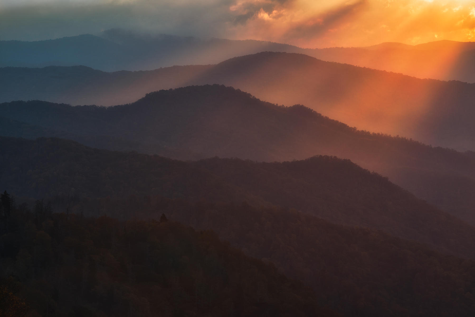 The Preformance - GSMNP_8158