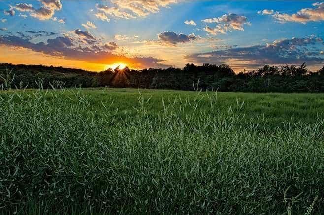 Kansas nature photography