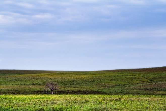 Kansas flint hills photography