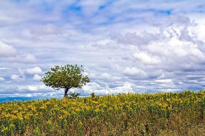 Kansas Prairie Photography