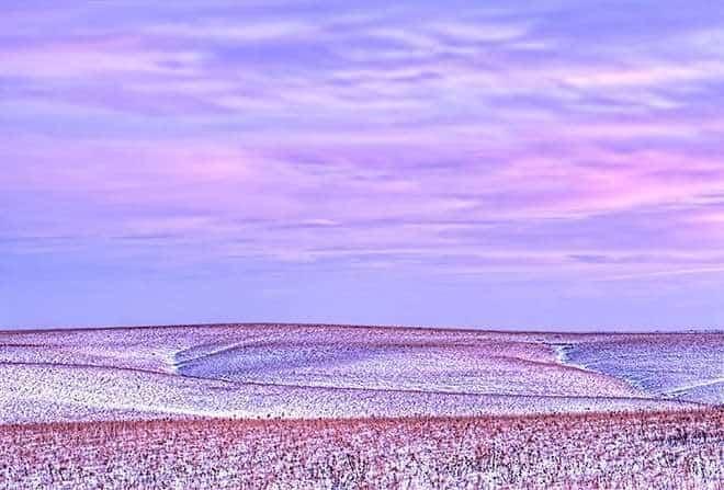 Pastel Grandeur | © Brad Mangas