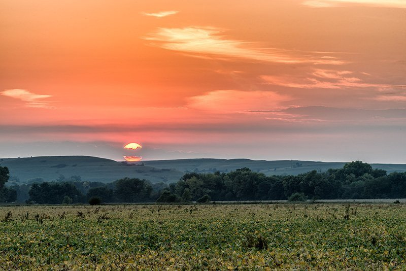 Across the bean fields to the distant Flint Hills - Kansas Agriculture