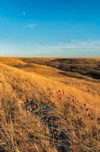 Late Autumn, The Kansas Flint HIlls