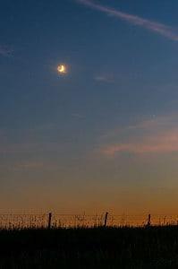 Brilliant Moon - FHSU_7883