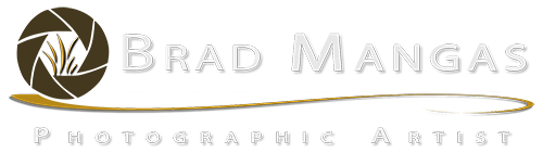 Brad Mangas, Photographic Artists Retina Logo