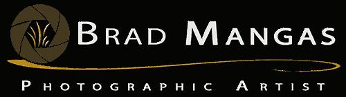 Brad Mangas, Photographic Artists Retina Logo