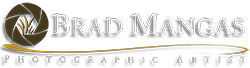 Brad Mangas, Photographic Artists Logo